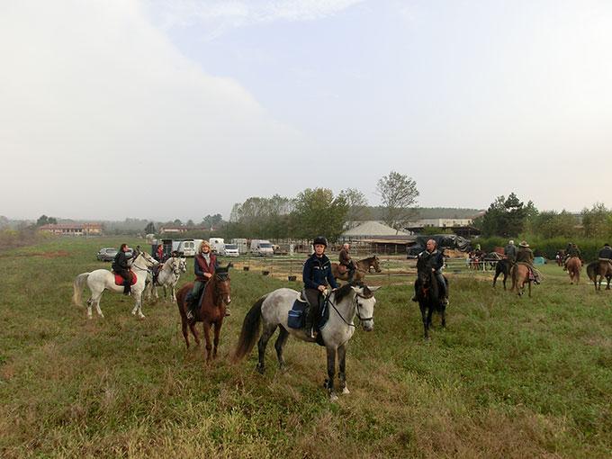 Primo Viaggio nelle Langhe - Trekking di gruppo a cavallo in Piemonte
