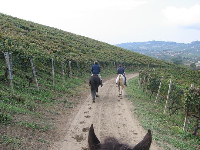 Trekking a cavallo in Piemonte: Primo Viaggio nelle Langhe