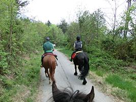 Salita e Passeggiata sul Monte Musinè