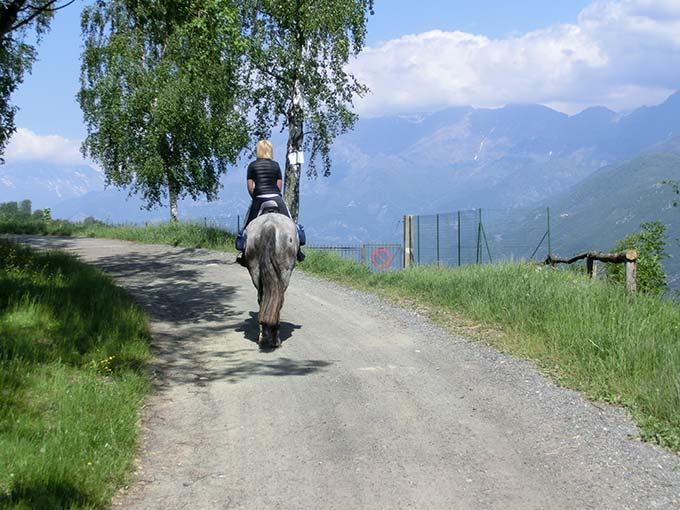 4 giorni in Bassa Val di Susa: da Alpignano a Meana di Susa